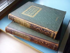 Nouveau Dictionnaire Vie Pratique - Dictionaries
