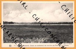 Graan En Voederteelt Ten Noorden Van Mortroux Bij Dalhem - H. BAPLUE - NELS - THILL - RORIVE VANNUFFE - Dalhem