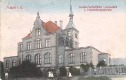 Hagen I.W. / Color Gel.1908 Landwirtschaftliche Lehranstalt U.Haushaltungsschule - Hagen