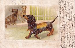 CPA Gaufrée Chien Dog Teckel Dackel Dachshund  Basset Vienne Viennoise (sans N°) Embossed (2 Scans) - Chiens