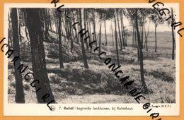Reliëf Begroeide Landduinen Bij Kalmthout - SEVERIN - NELS - THILL - RORIVE VANNUFFELLE - Kalmthout