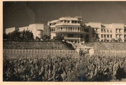 MAROC. CPA Photo AGADIR. Hotel , Marhaba ? . 1953. Voir Scan Du Verso. - Agadir