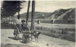 YVOIR CHARETTE AVEC CHIENS LE LONG DE LA MEUSE  1912 - Andere