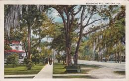 Florida Daytona Ridgewood Avenue 1924 Curteich