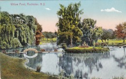 New York Rochester Willow Pond