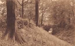 Domaine De MARIEMONT - Le Parc - Pont Rustique - Morlanwelz