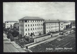 MOLFETTA - BARI - ANNI 60 - SEMINARIO  REGIONALE - Molfetta