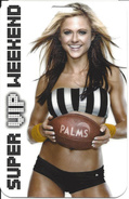 Palms Casino - Las Vegas, NV -  Super VIP Weekend - Special Event Credentials (5 X 3.25 Inches) - Casino Cards