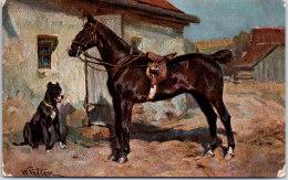 THEMES - CHEVAUX - Un Cheval Et Un Dogue - Chevaux