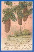 Fantaisie; Weihnachten; Tannenzapfen; Litho; 1903 Köln Nippes - Zonder Classificatie