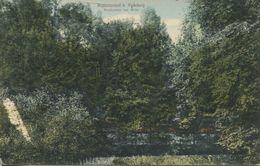 Augustusburg B. Radeberg - Waldpartie Am Wehr (001548) - Augustusburg
