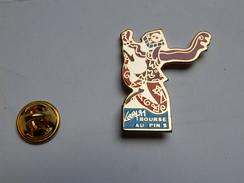 Beau Pin's , Bourse Aux Pin's ; Gary 91 - Pin's & Anstecknadeln
