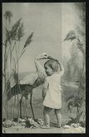 RB 1167 -  Early Raphael Tuck Postcard - Baby & Stork - Bird Animal Theme - Children