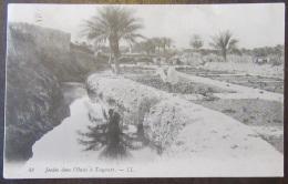 Algérie - Touggourt (Tougourt) N°48 - Jardin Dans L'Oasis - Animée - Timbre YT N°137 - Cachet 1909 - Other Cities