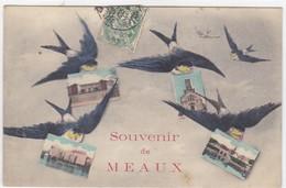Seine-et-Marne - Souvenir De Meaux - Meaux