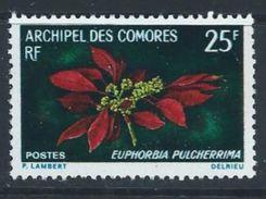 Comores YT 56 XX / MNH Fleur Flower - Isla Comoro (1950-1975)