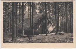 CPA Allemande-Französisches ALPE Abri Camouflage -5.Komp.-Rgt. Nr 4 -EST De La FRANCE- 1916(guerre14-18)2scans - Oorlog 1914-18