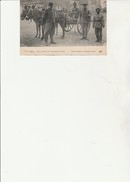 CARTE POSTALE 1914 -PETIT ATTELAGE DE CAMPAGNE INDIEN AVEC INFIRMIER CROIX ROUGE - TB - Croix-Rouge