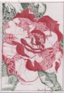 Daniel France (Guyana, Ex Guyane Britannique, Amérique Du Sud) - Aquarelle Sur Papier, Rose Simple, 24 X 30 Cm, 1996 - Watercolours
