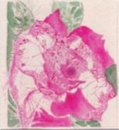 Daniel France (Guyana, Ex Guyane Britannique, Amérique Du Sud)  - Aquarelle Sur Papier, Rose Flower, 24 X 30 Cm, 1996 - Watercolours