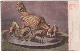 243 - MONZA CHIOCCIA D'ORO 1900 CIRCA - Fine Arts
