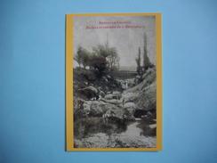 """RENNES LE CHATEAU  - 11  -  Rochers Et Cascades Du """" Saoutadou """"     -  Abbé SAUNIERE  -  Collection PEGASE  - AUDE - Other Municipalities"""