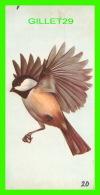 FICHES ILLUSTRÉES OISEAUX - BIRDS - BLACK-CAPPED CHICKADEE - No 20 - - Animaux