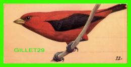 FICHES ILLUSTRÉES OISEAUX - BIRDS,  SCARLET TANAGER  - No 32   - - Animales