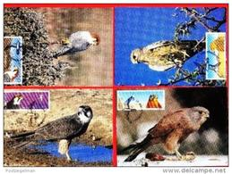 NAMIBIA, 1999, Mint Maxi Cards, Sa Nr. 299-303, Falcons Of Namibia, F3836 - Namibia (1990- ...)