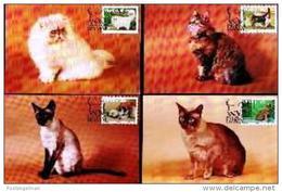 VENDA, 1993, Mint Maxi Cards, MI Nr.106-109,  Cats - Venda