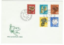 Suisse // Schweiz // Switzerland //  Pro-Juventute  // 1965 Série Complète Sur Lettre 1er Jour - Lettres & Documents