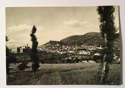 ASSISI PANORAMA   VIAGGIATA FG - Perugia