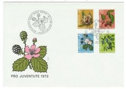 Suisse // Schweiz // Switzerland //  Pro-Juventute  // 1973 Série Complète Sur Lettre 1er Jour - Lettres & Documents
