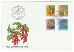 Suisse // Schweiz // Switzerland //  Pro-Juventute  // 1976 Série Complète Sur Lettre 1er Jour - Lettres & Documents