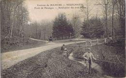 72 - Neufchatel-en- Saosnois (Sarthe) - Forêt De Perseigne - Rond-point Des Trois Ponts - France