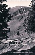 Chandonnaz Chalet Et Troupeau, Dent De Valerette, Monthey (25500) - VS Valais