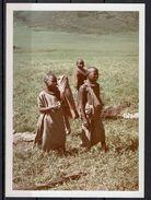 Afrika, Natur, Savanne, Kinder Von Hobbyfotograf (18) - Afrika