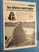 DIV415 : Clipping CADEAUX  PUBLICITAIRES  ESSO IMAGES LES DIEUX SAUVAGES  -  Pour  Collectionneurs ... PUBLICITE  Page D - Autres