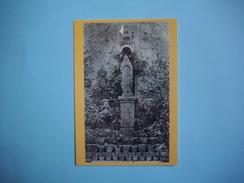 RENNES LE CHATEAU - 11  -  Parterre De Notre Dame De Lourdes  -  Abbé SAUNIERE  -  Coll. PEGASE  - AUDE - France
