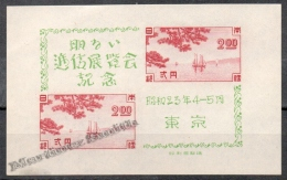Japan - Japon 1948 Yvert BF 22, Transport Exhibition At Tokyo - Green - Miniature Sheet - MNH - Nuovi