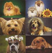 6 Pocket Calendars  DOGS   Lithuania 2018 - Formato Piccolo : 2001-...