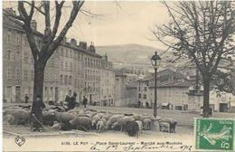 43. LE PUY.   PLACE SAINT LAURENT.   MARCHE AUX MOUTONS EN 1912. - Le Puy En Velay