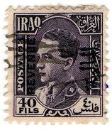 (I.B) Iraq Revenue : Duty Stamp 40f - Iraq