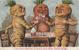 Gruss Aus Dem Rübliland Aargau.-Litho - AG Argovie