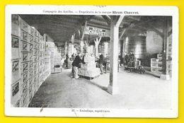 Pub Rhum CHAUVET Compagnie Des Antilles - Werbepostkarten