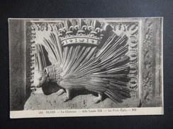 CPA - (41) - TRES RARE - BLOIS - LE CHATEAU - AILE LOUIS XII - LE PORE EPIC -  R8783 - Blois