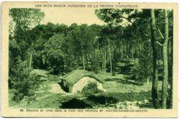85 NOTRE-DAME DE MONTS (environs) ++ Douceur De Vivre Dans La Forêt ++ - Sonstige Gemeinden