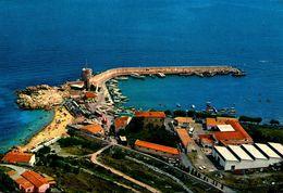 ISOLA D'ELBA - Marciana Marina - Panorama Del Porticciolo - Non Classés