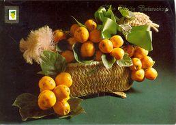 Espagne - Fruits En Présentation - Escudo De Oro - 3875 - Flowers, Plants & Trees