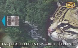TARJETA DE COSTA RICA DE UN OCELOTE  (PUZZLE) - Tarjetas Telefónicas